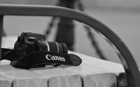 Picture the camera, canon, bench