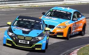 Picture BMW, GTE, (E89)