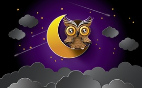 Picture stars, night, clouds, owl, the moon
