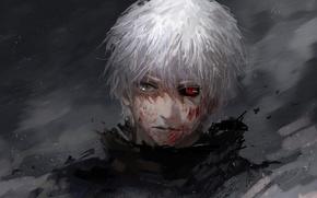 Picture anime, art, Art, white hair, anime, red eye, Tokyo Ghoul, Ken Kanek, Tokyo Ghoul, The …