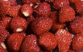 Wallpaper berries, Strawberry, red
