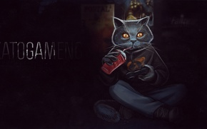 Picture game, the game, Cat, game, Half-Life, cat