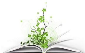 Picture plant, art, book