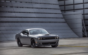 Picture car, Dodge, Challenger, grey, muscle car, T/A 392