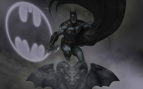 Picture hero, Batman, avenger