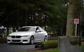 Picture BMW, white, front, F30