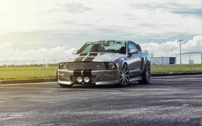 Picture Mustang, Ford, muscle car, front, silvery, kit, 550R