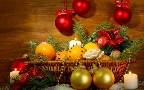 Picture decoration, basket, tree, oranges, New Year, Christmas, Christmas, decoration, lantern, Merry