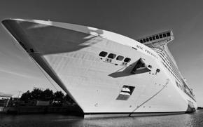 Picture Water, White, Liner, Case, The ship, Nose, Tank, Black and white, MSC, Bori, Precious