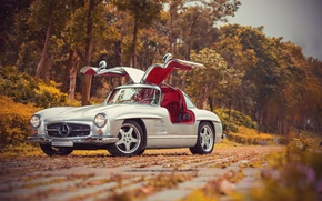 Picture Mercedes-Benz, 1954, AMG, 300, Gullwing