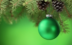 Picture green, toys, tree, ball, spruce, branch, ball, New Year, Christmas, Christmas, bumps, New Year, Christmas
