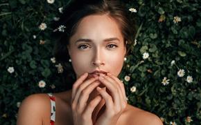 Picture look, girl, green, sweetheart, portrait, brunette, light, the beauty, Veronika, nature, art, beauty, mood, palm, …