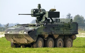 Picture machine, combat, armored, multipurpose, wheel, Pandur II