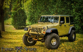 Picture Wrangler, Jeep, Offroad