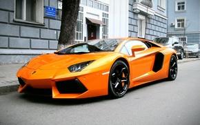 Picture orange, Lamborghini, supercar, Lamborghini, Aventador, aventador, LP 700-4