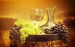Picture forest, trees, landscape, fog, background, wine, glasses, grapes, pitcher, barrel