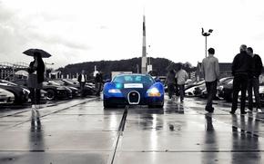 Wallpaper veyron, rain, bugatti