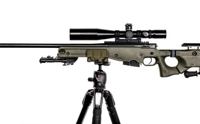 Picture weapons, rifle, sniper, International AW, Accuracy