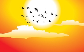 Picture the sun, clouds, birds, vector graphics