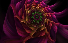 Wallpaper paint, the volume, spiral, flower
