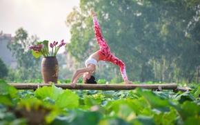 Wallpaper yoga, gymnastics, girl, Asian