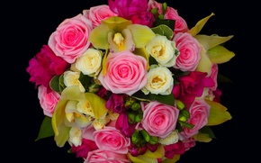 Picture flowers, bouquet, roses, flower, beautiful, pink, orchids, Orchid