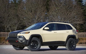 Picture Concept, jeep, Jeep, Cherokee, 2015, Canyon Trail