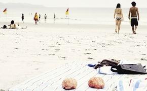 Picture Beach, Summer, Brain
