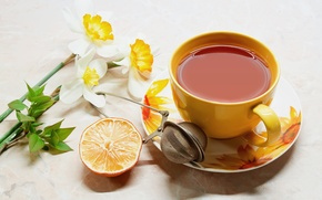 Picture flowers, table, tea, orange, Cup, drink, mesh, saucer