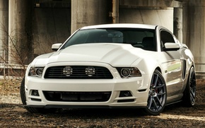 Picture Mustang, Ford, 5.0