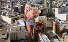 Wallpaper machine, the city, home, Jenni Gregg, blonde
