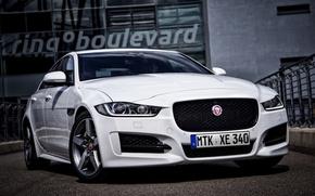 Picture Jaguar, Jaguar, Sport, 2015, XE R