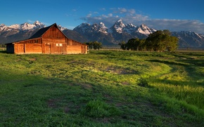 Picture field, landscape, mountains, house