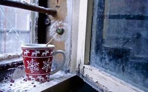 Picture dandelion, window, Cup