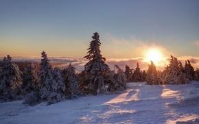 Picture Schnee, Berg, Brocken, Clouds, Morgen, Fog, Ice, Sunrise