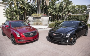 Picture Cadillac, two, ATS