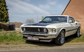Picture Mustang, Ford, white, Mach 1, 351