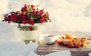 Picture flowers, snow, coffee, oranges