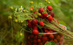 Picture glass, berries, strawberries