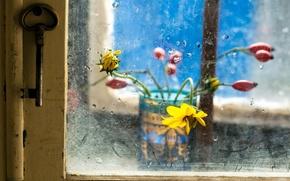 Picture glass, flowers, key, window
