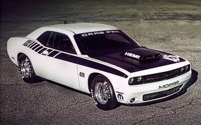 Picture Dodge Challenger, Supercharged, Mopar, HEMI, Drag Pak-426