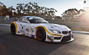 Picture BMW, ALMS, racecar, 2013, endurance, Z4 GTE