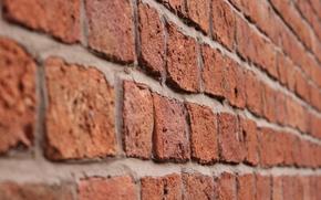 Picture macro, wall, bricks