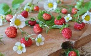 Picture flowers, berries, strawberries, Board