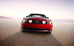 Wallpaper Mustang, Ford, 2010
