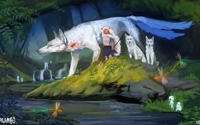 Picture forest, stream, wolf, perfume, dragonfly, mask, spear, art, deity, mononoke hime, kalambo, moro