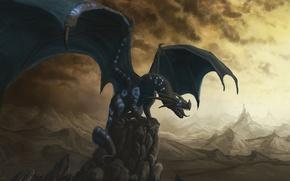 Picture rocks, black, dragon