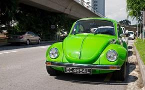 Picture green, beetle, Volkswagen Beetle