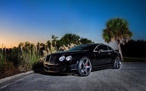 Picture black, coupe, Bentley, Continental GT, black, front, Bentley, continental