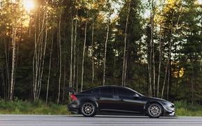 Picture Concept, Volvo, Profile, Volvo, S60, WTCC